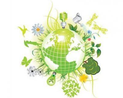 Piknik Ekologiczny / Eko-Piknik